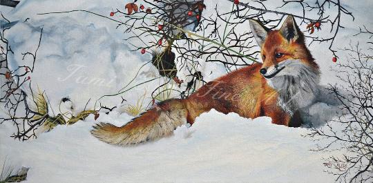 Fox Painting